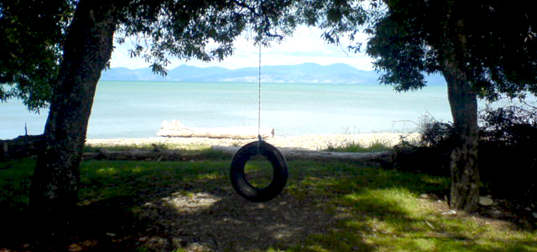 TYRE-NEW-ZEALAND-URBANMUNKIE